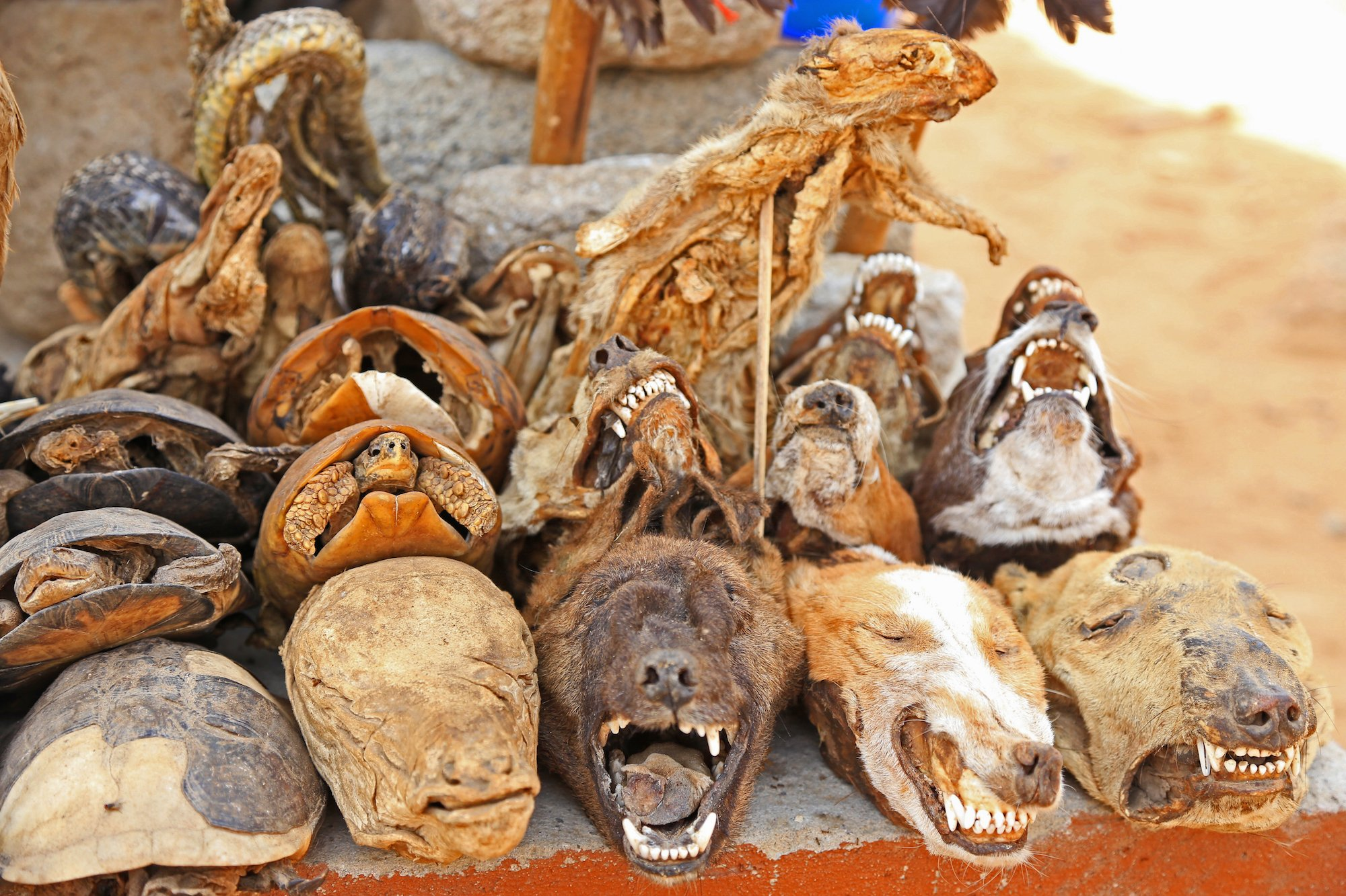 popular shrines in benin. www.eremmel.com