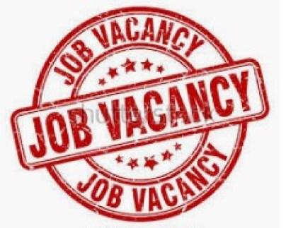 job vacancies in yola. www.eremmel.com
