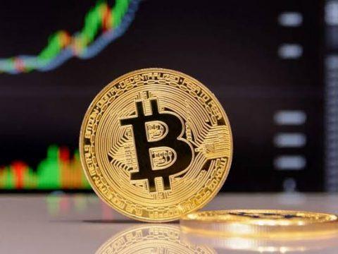 Tuvalu Bitcoin whatsapp group link. www.eremmel.com